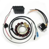 ricky stator manufacturer of atv and dirt bike stators electrical components lighting
